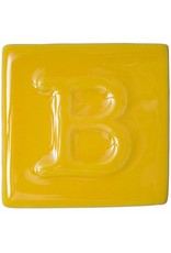 Botz Canary Yellow - 200ml