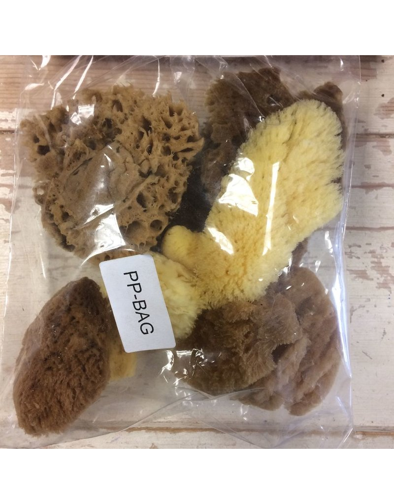 Royal & Langnickel Natural sponge mixed bag