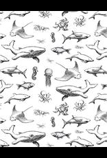 Sanbao Ocean – Fish (underglaze decal - 16cm x 22cm)