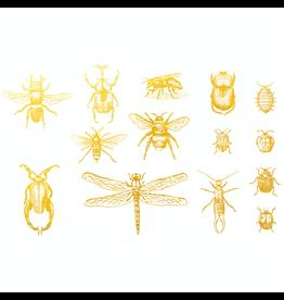 Sanbao Gold Bugs 02 Decal