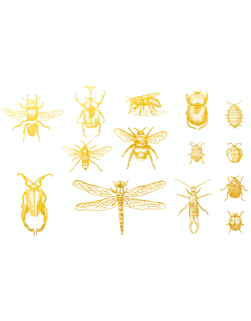 Sanbao Gold Bugs 02 Overglaze Decal