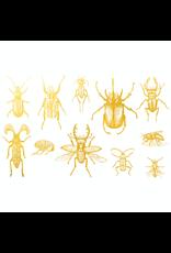 Sanbao Gold Bugs 01 Overglaze Decal