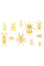 Sanbao Gold Bugs 01