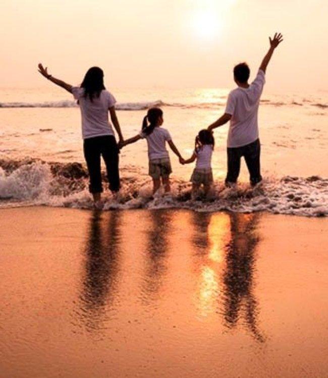 Familien und Ahnen Heilung Coach / Webinar