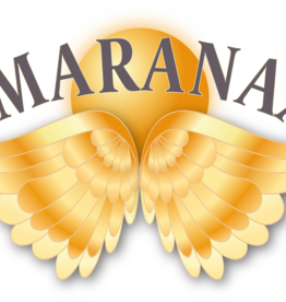 Smaranaa Beginner Masterclass