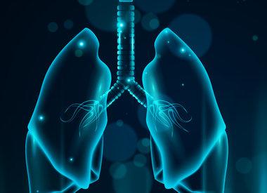 27.08.2020  Stärkung von Lunge und Bronchien