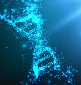 Smaranaa Webinar  DNA Schutz und Umstrukturierung