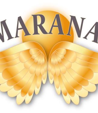 Smaranaa Zertifikat für mystischen Heiler