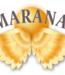Smaranaa Zertifikat I für geistige Wirbelsäulen Begradigung