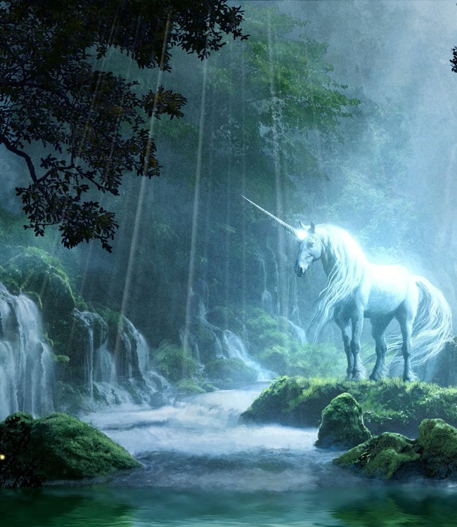 Smaranaa Schutzpatron des Lichtes Harmonisierung von Aura und Chakren