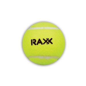 Tennisballen training, set van 4