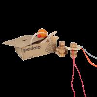 Pedalo Team game box