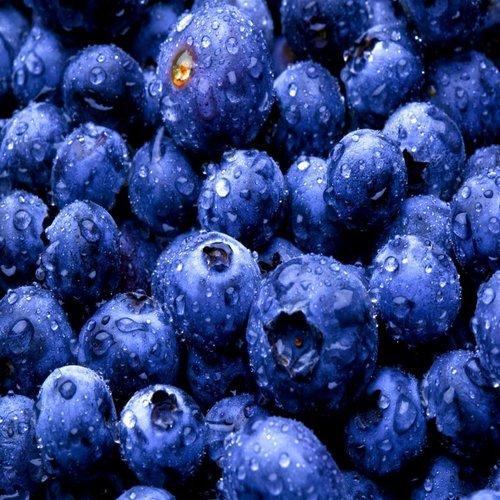 CLASSIC - Bosbessen - Fruitsiroop