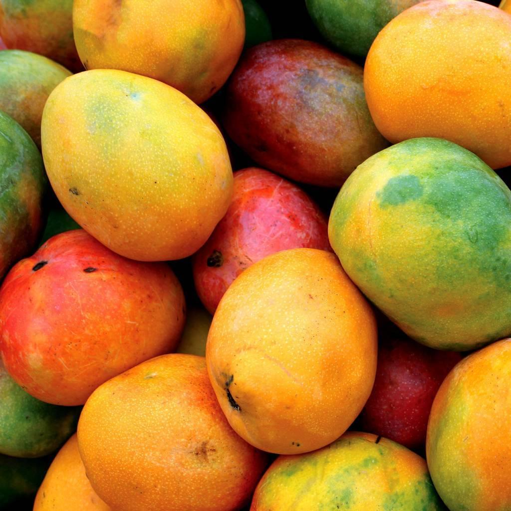 - Mango - Fruit syrup