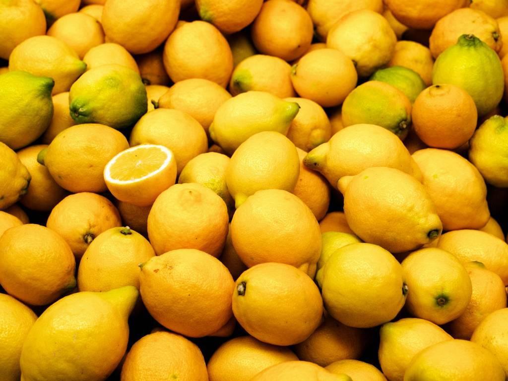 - Lemon - Fruit syrup