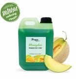 Premium - Melón galia - Jarabe de frutas -