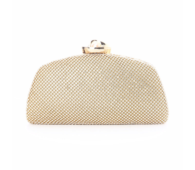 8059 Light Gold/Pearl clasp Bag
