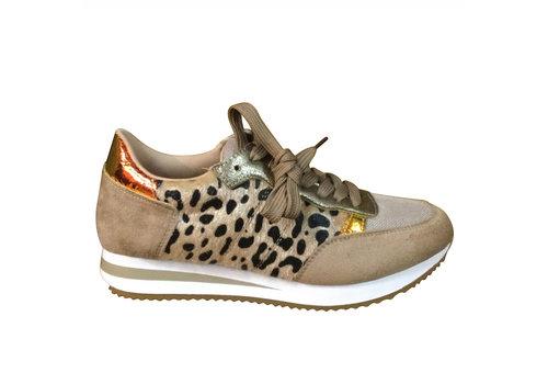 REDZ REDZ Q03906-12 Beige Multi Sneaker