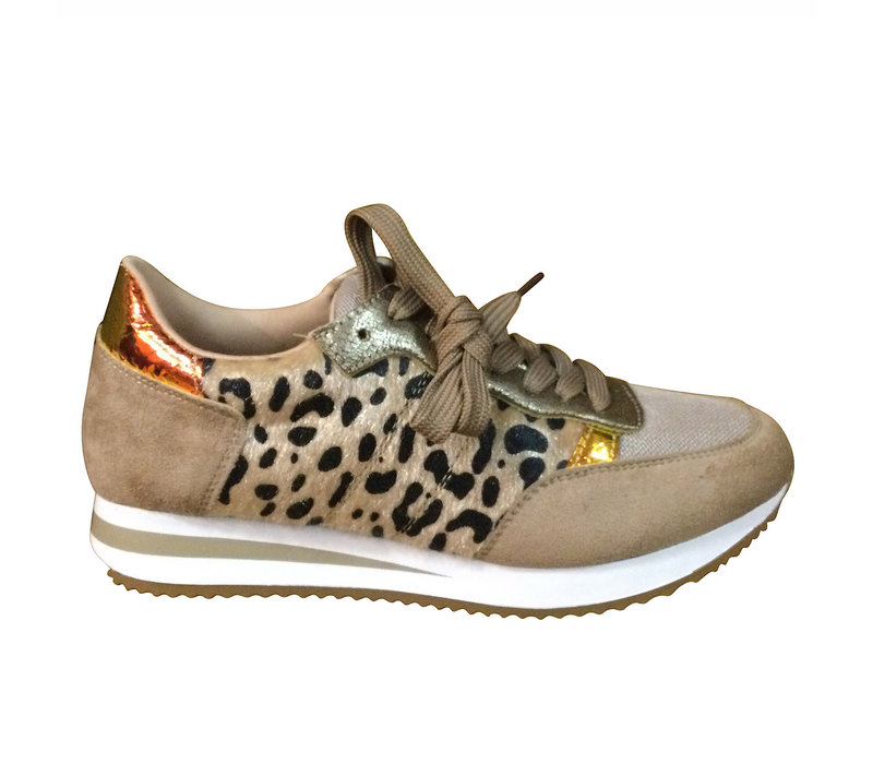 REDZ Q03906-12 Beige Multi Sneaker