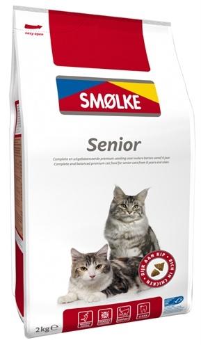 Smolke Smolke cat senior
