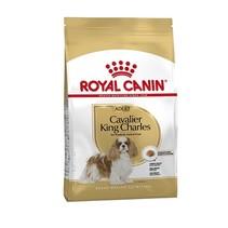 Royal canin cavalier king charles adult