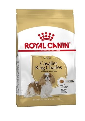 Royal canin Royal canin cavalier king charles