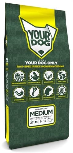 Yourdog Yourdog medium