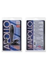 Apollo Prostata Plug noir