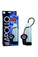 Apollo Automatic Power pompe à pénis