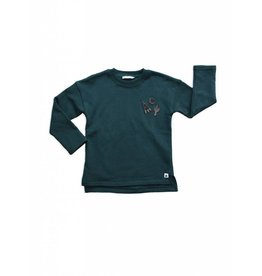 Ammehoela Dark green sweater with patches