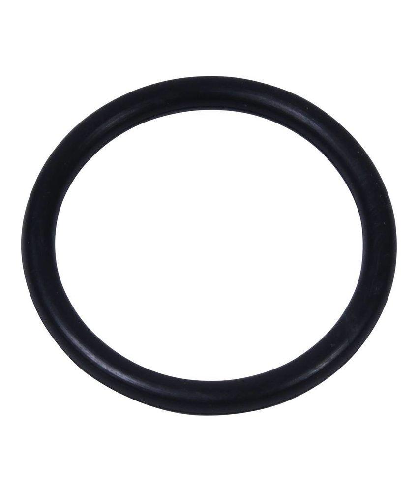 Intex o-ring voor slangaansluiting