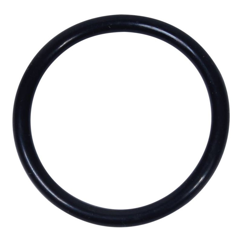 Intex O-ring voor slang (nr. 10)