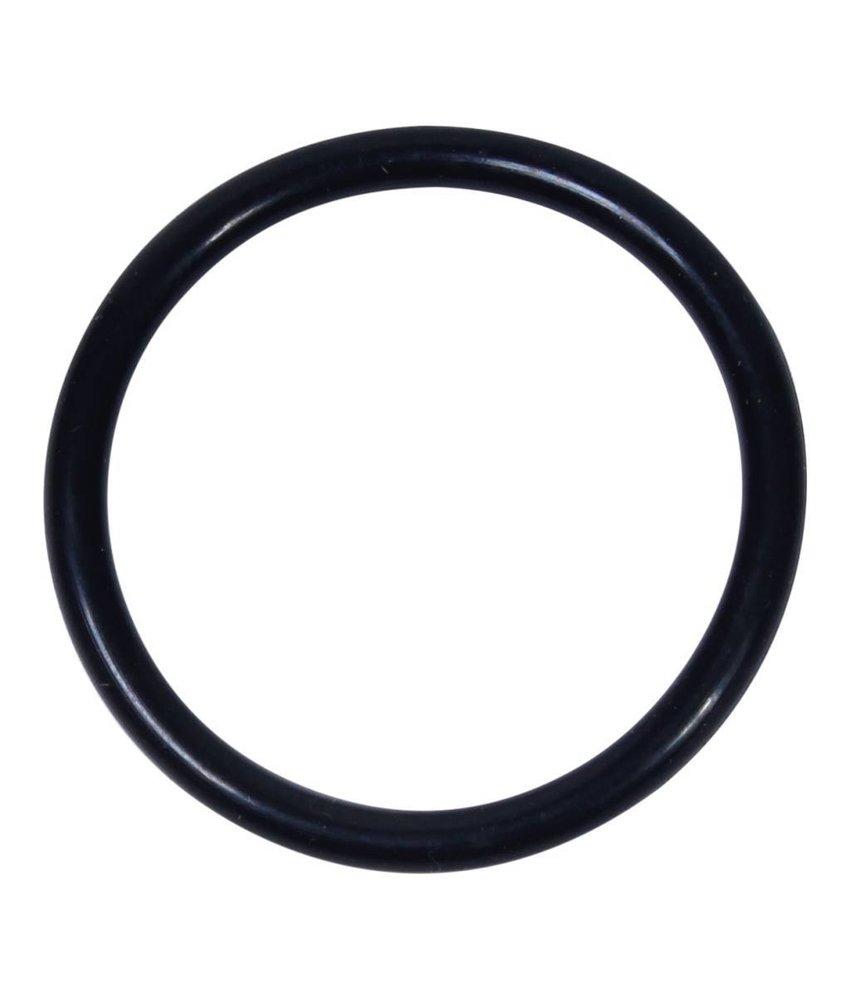 Intex O-ring voor slang