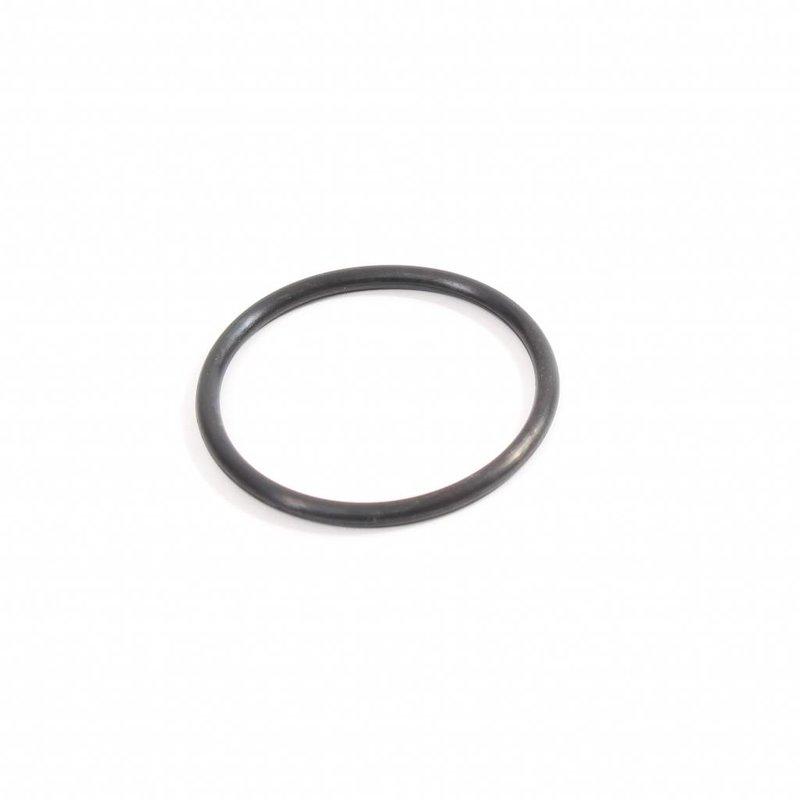 Intex ring voor pomp inlaat