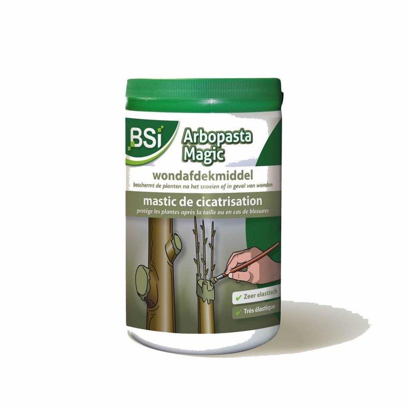 BSI Arbopasta Magic boomwondpasta 1 kg