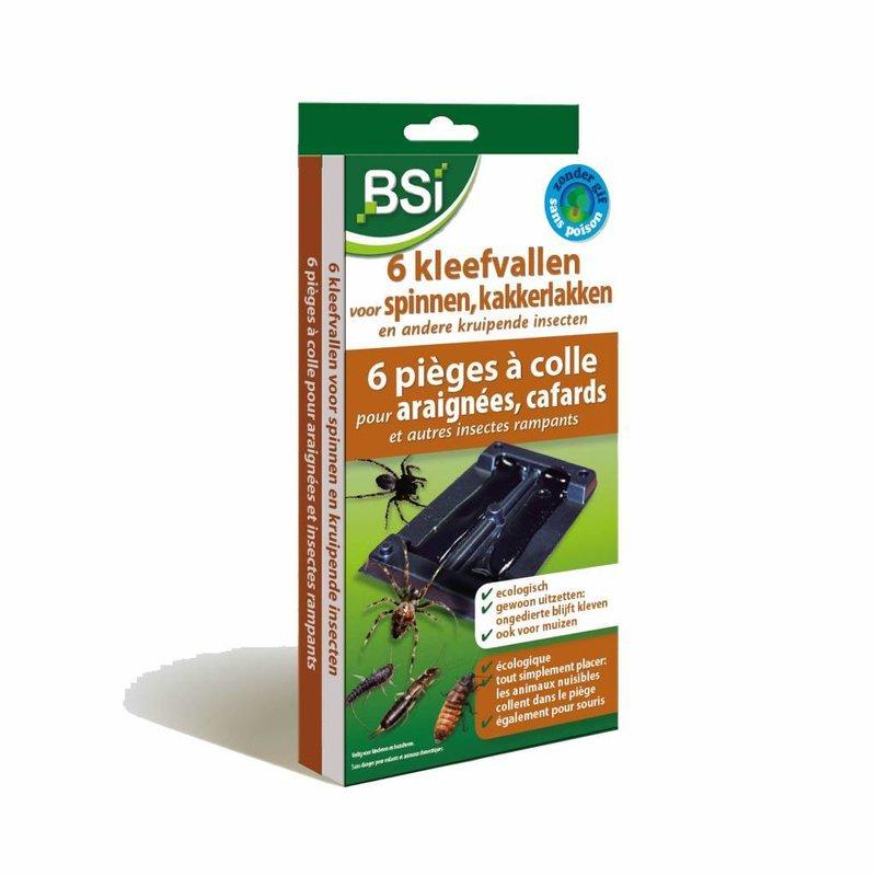 BSI Kleefvallen voor spinnen 6 stuks