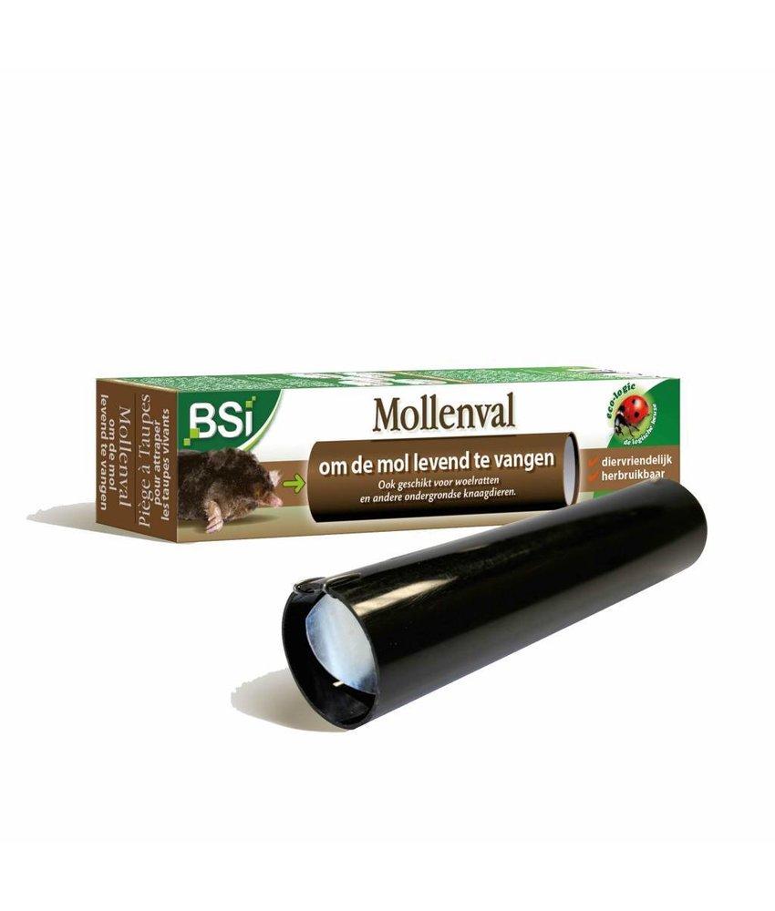 BSI Mollenval