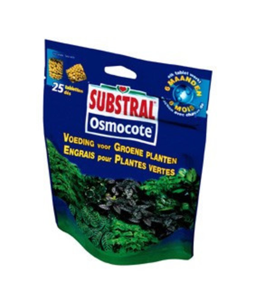 Substral Osmocote Groene Planten voeding 25 st
