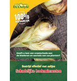 Ecostyle Aaltjes tegen larven uienvlieg (60 m²)