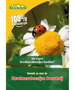 Lieveheersbeestjes Boerderij (adalia farm)
