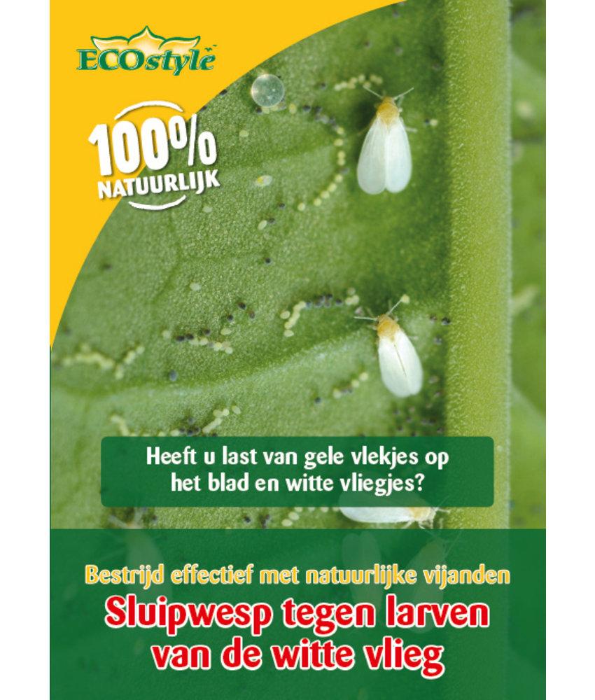 Ecostyle Sluipwesp tegen de larven van de witte vlieg (10 m²)
