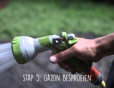 Gazon inzaaien: hoe kunt u een nieuw gazon inzaaien?