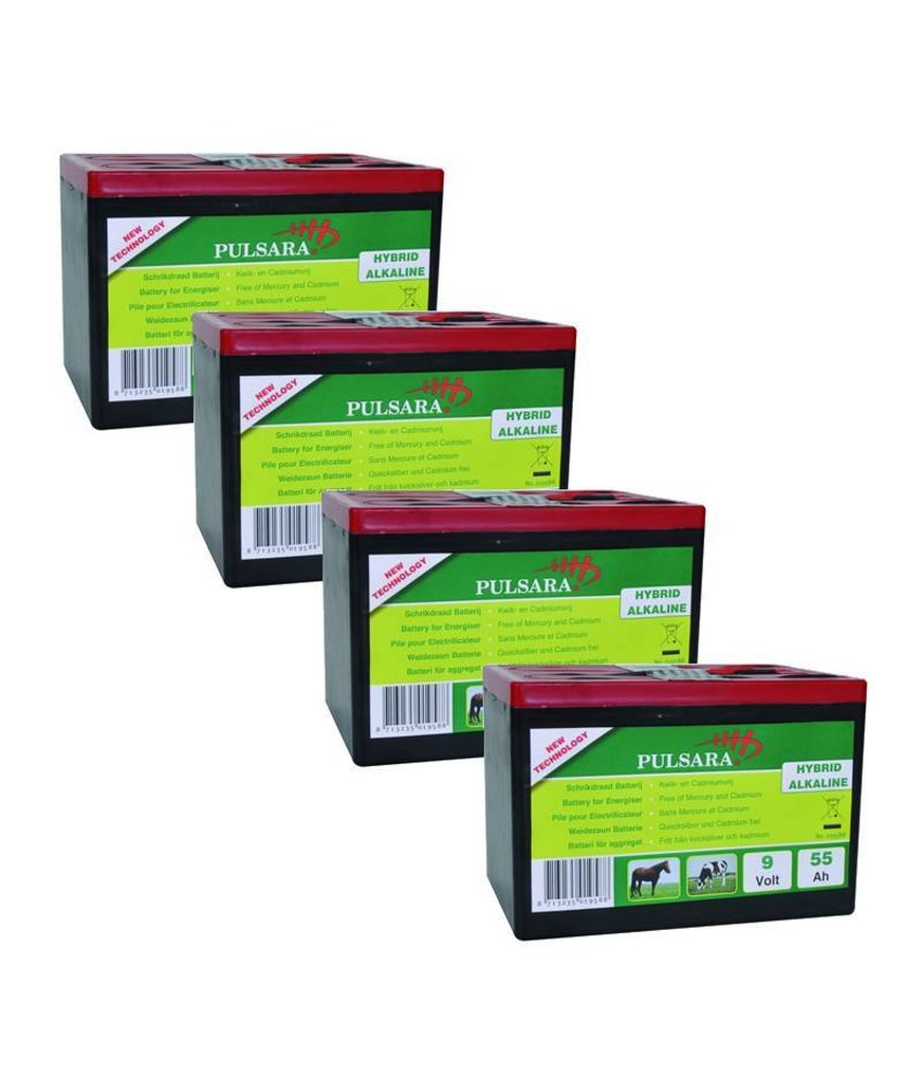 Pulsara Batterij High Energy 9V/55Ah (4-pack)