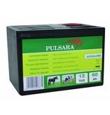 Pulsara Alkaline batterij 12V/60Ah