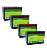 Pulsara Alkaline batterij 9V/160Ah groot (4-pack)