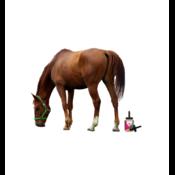 Hoefverzorging voor paarden en pony's