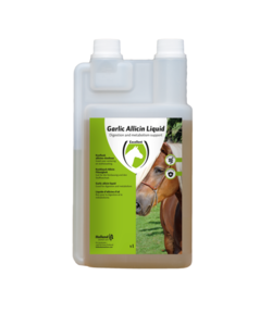 Garlic Allicin Liquid EU (knoflook vloeibaar) 1 liter