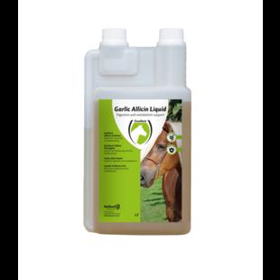 Garlic Allicin Liquid EU (knoflook vloeibaar) 1 liter