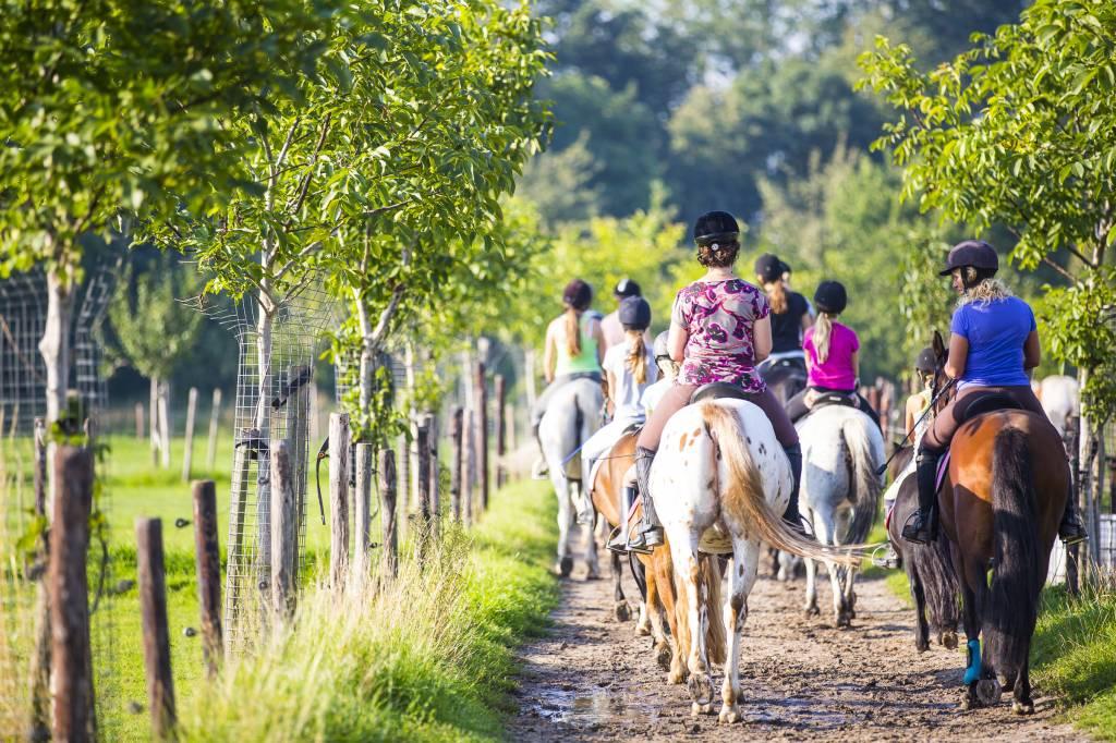 Paardrijden in Zuid-Limburg