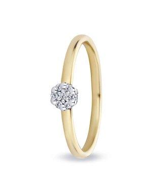 Miss Spring ring 18kt Entourage 0.07ct MSR542GG